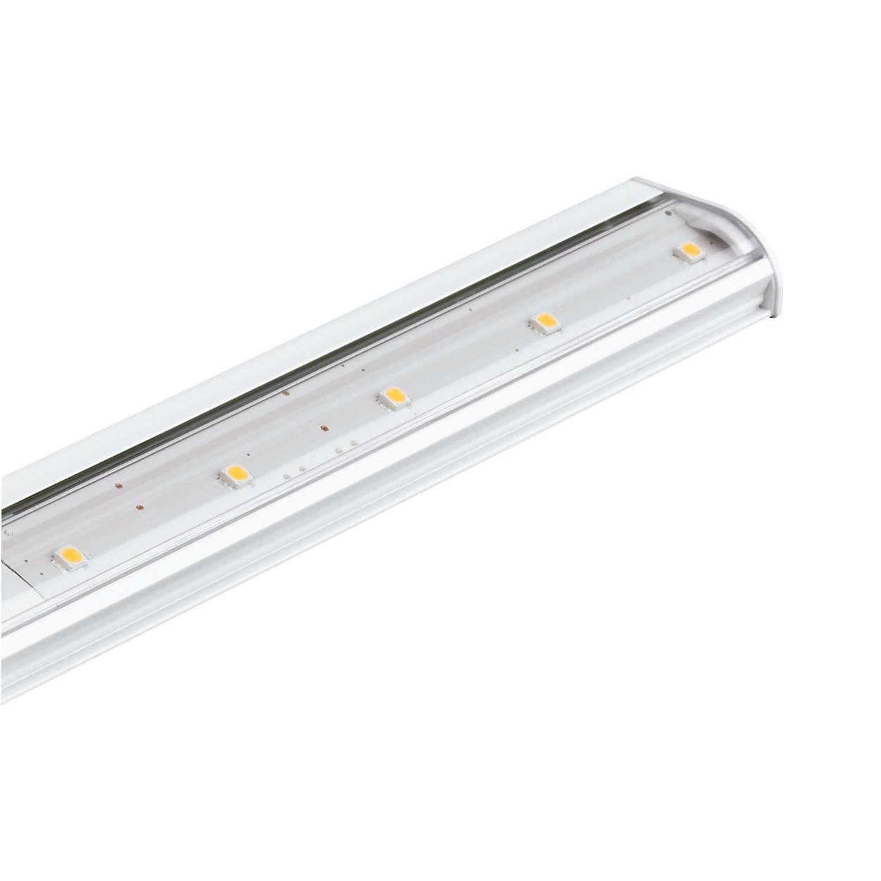 eW Profile Powercore: luminaria LED de luz blanca bajo vitrina de perfil ultrabajo