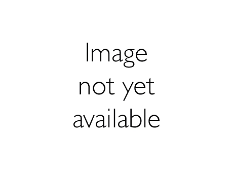 LRL1222/15 ActiLume MicroluxSense W