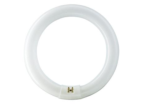 FC6T9/COOL WHITE PLUS 12PK