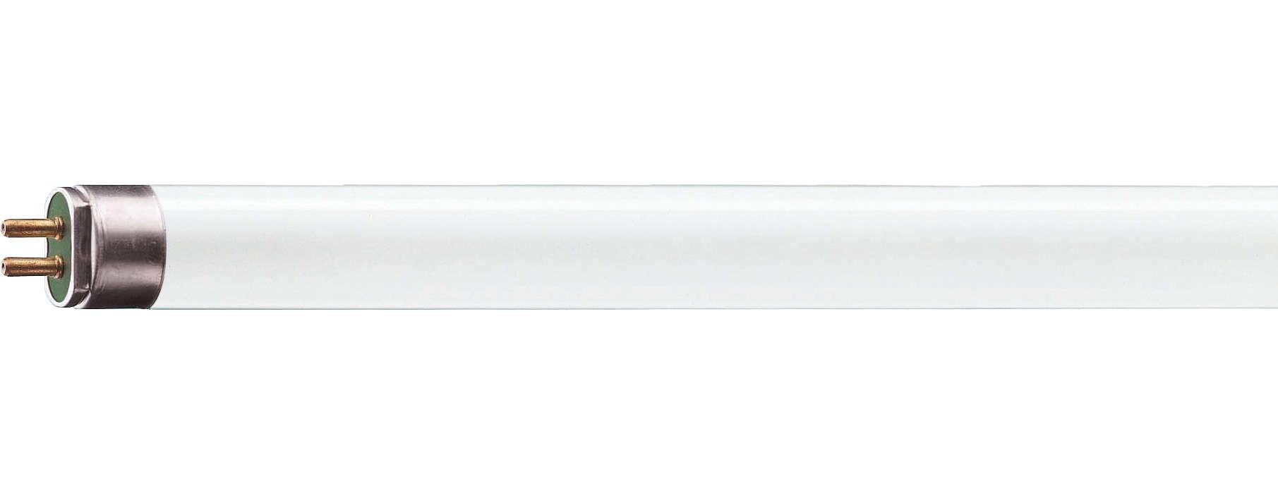 Luz fluorescente energizadora