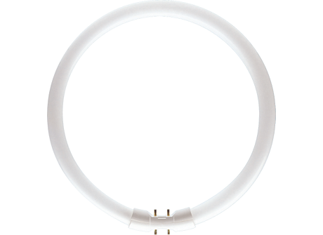 MASTER TL5 Circular 40W/865 1CT/10