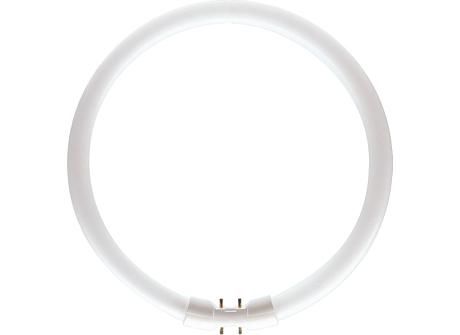 MASTER TL5 Circular 55W/840 1CT/10