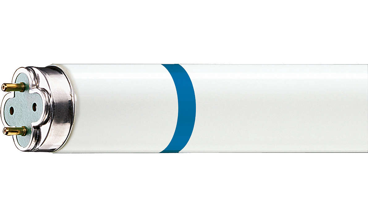 Langlebige, splittergeschützte Leuchtstofflampe