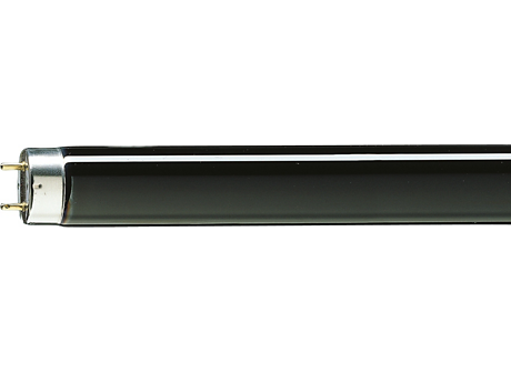 TL-D 18W BLB 1SL/25
