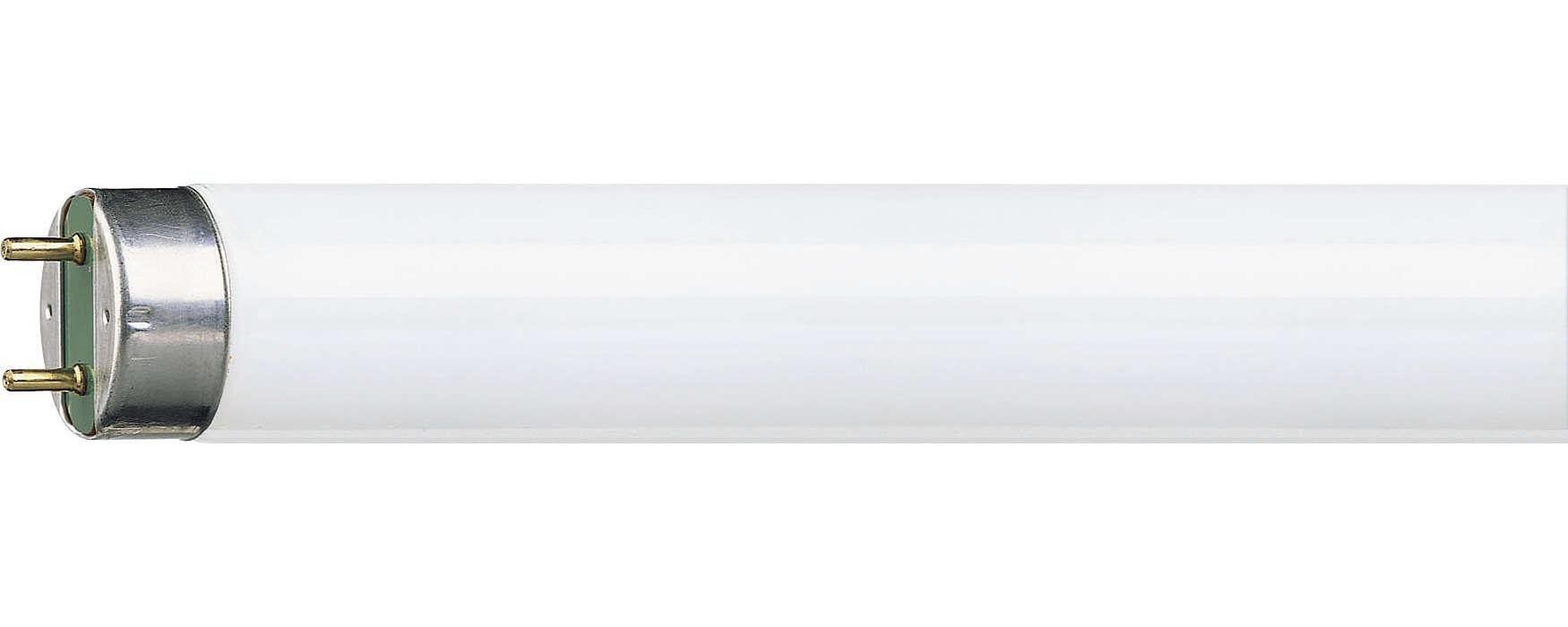 Die Leuchtstofflampe mit integriertem Reflektor