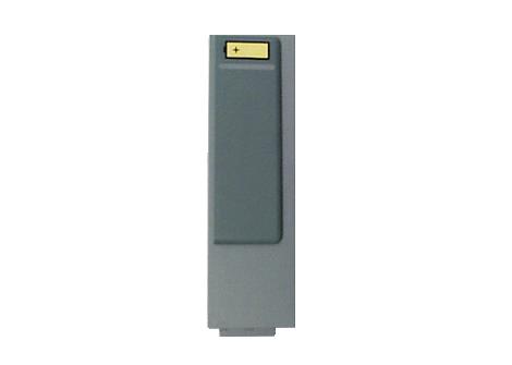 ForeRunner Disposable LitMn02 Battery Pack Battery