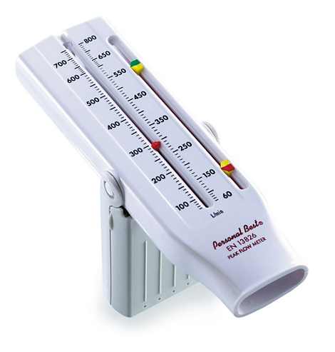 Personal Best Peak flow meter