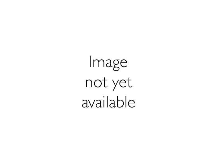 ArenaVision Gear EVF403/404