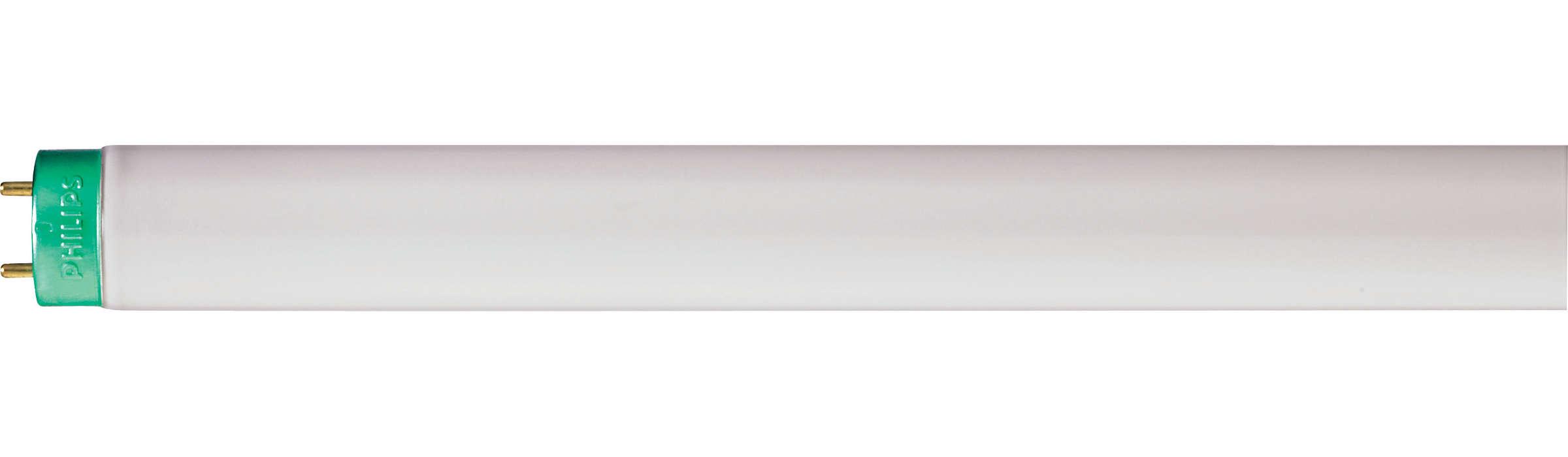 TL-D LIFEMAX Super 80