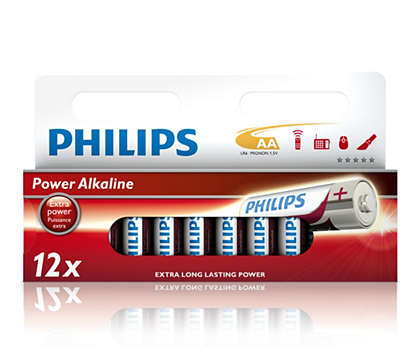 Powers all high-energy consuming devices