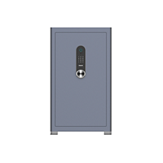 SBX601C8L0/93  电子保险柜