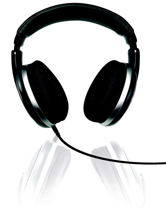 Performanţă de sunet hi-fi dinamic