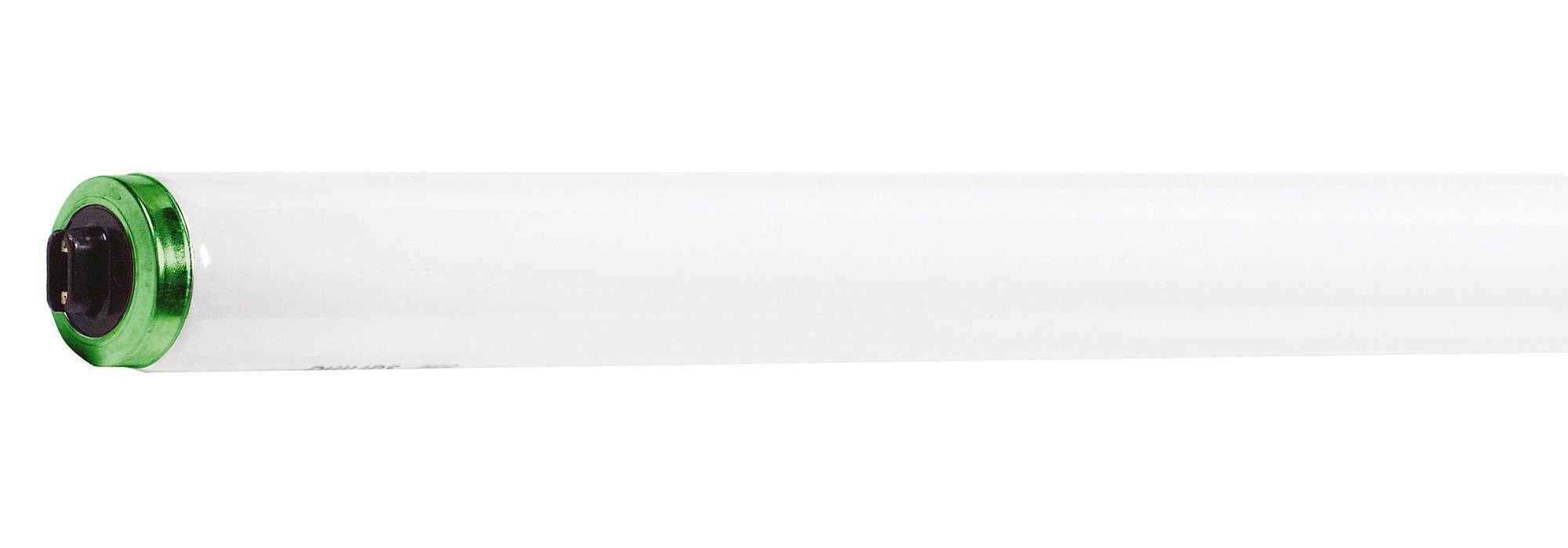 Environmentally Responsible Lamps