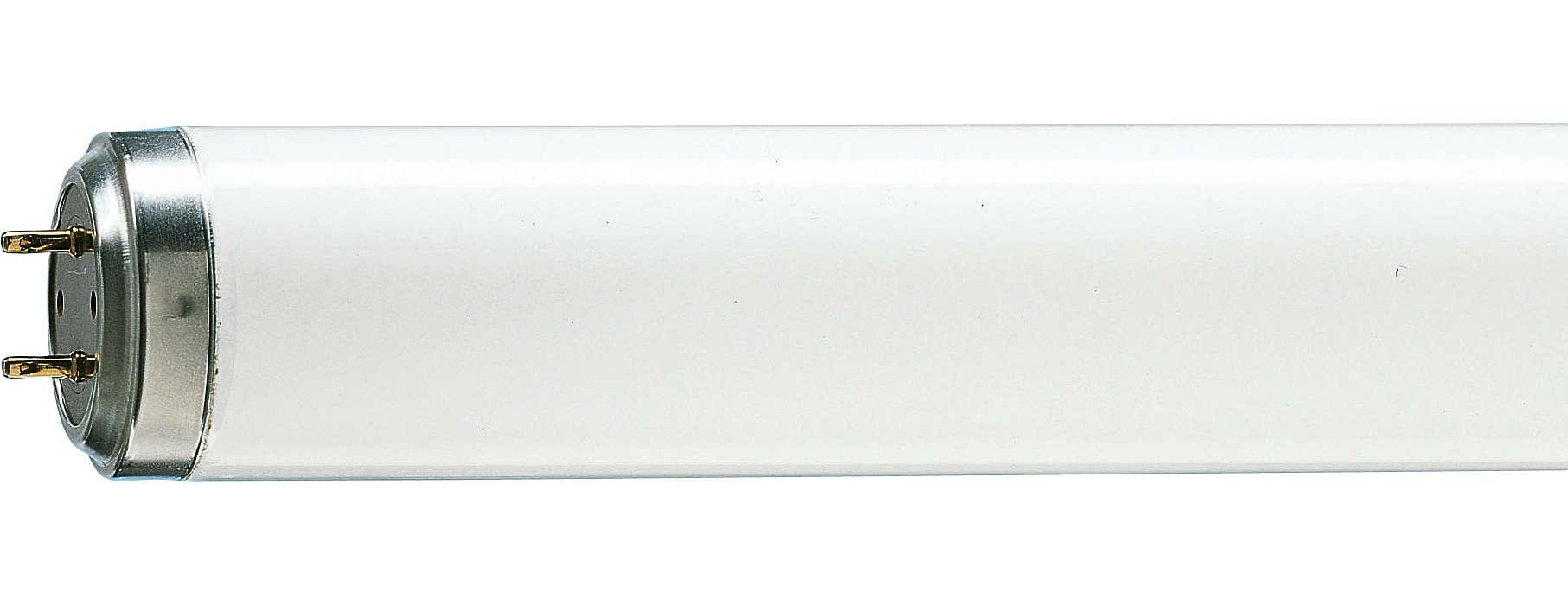 Lâmpadas T12 com partida confiável.
