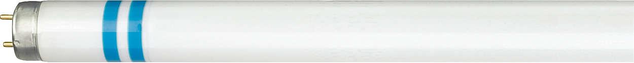 Éclairage fluorescent protégé contre les bris de verre