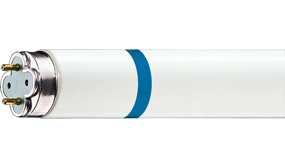Très longue durée de vie, éclairage fluorescent protégé contre les bris de verre