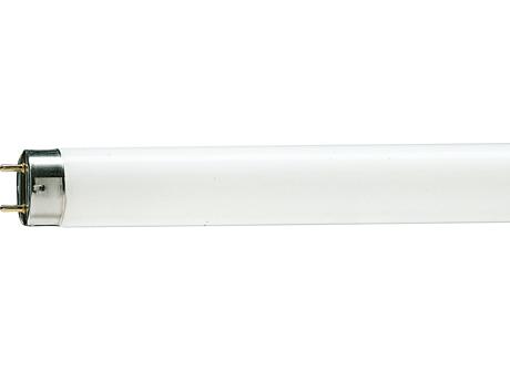 TL-D 10W/33-640 1SL/25