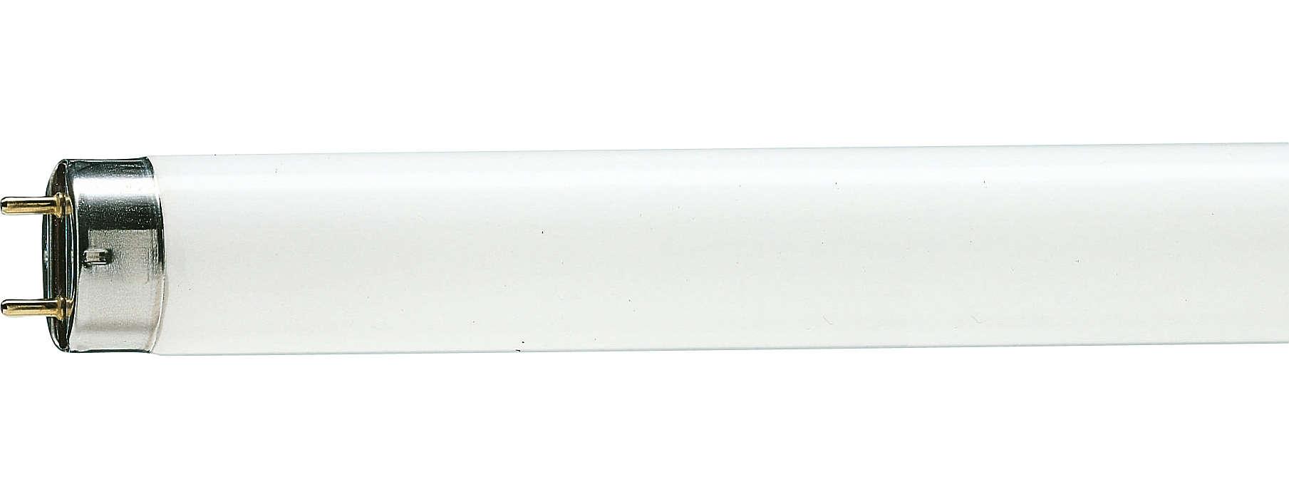 Basic fluorescent lighting
