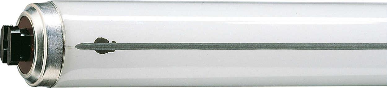 Starter free T12 lamp