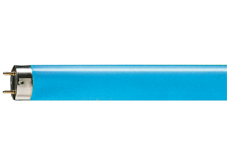 TL-D Colored 18W Blue 1SL/25