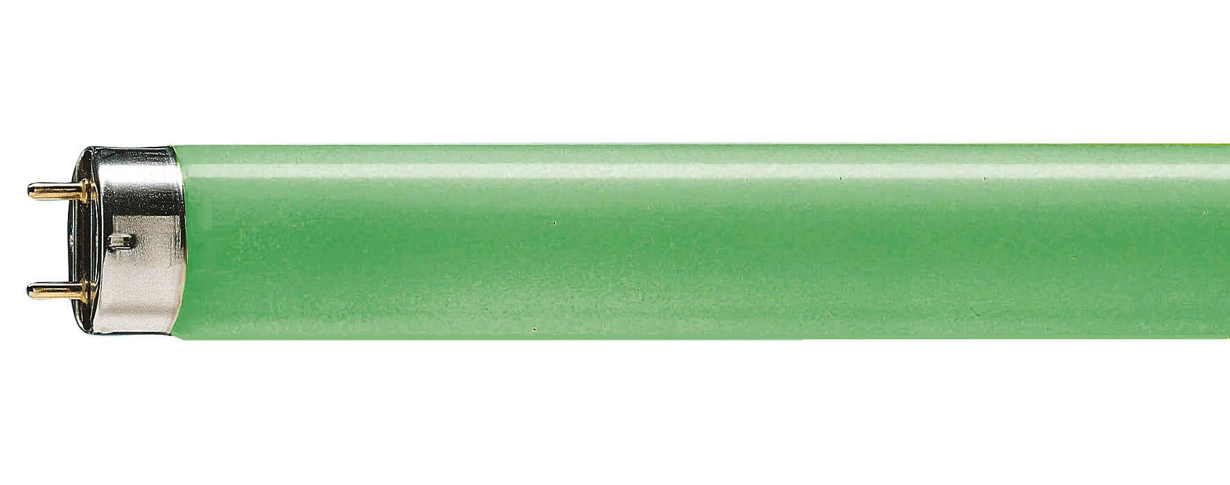 Éclairage fluorescent rouge, vert et bleu