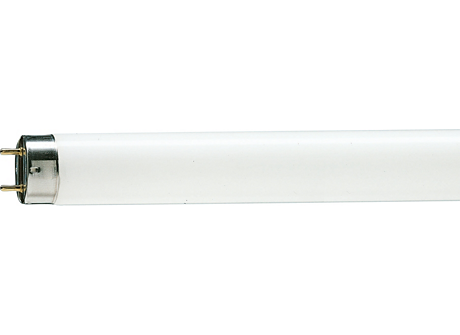 TL-D 58W/54-765 1SL/25