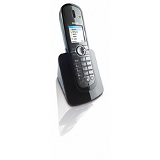 VOIP8410B/05  Internet/DECT phone