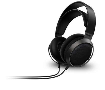 Wie ein Konzertsaal für Ihre Ohren
