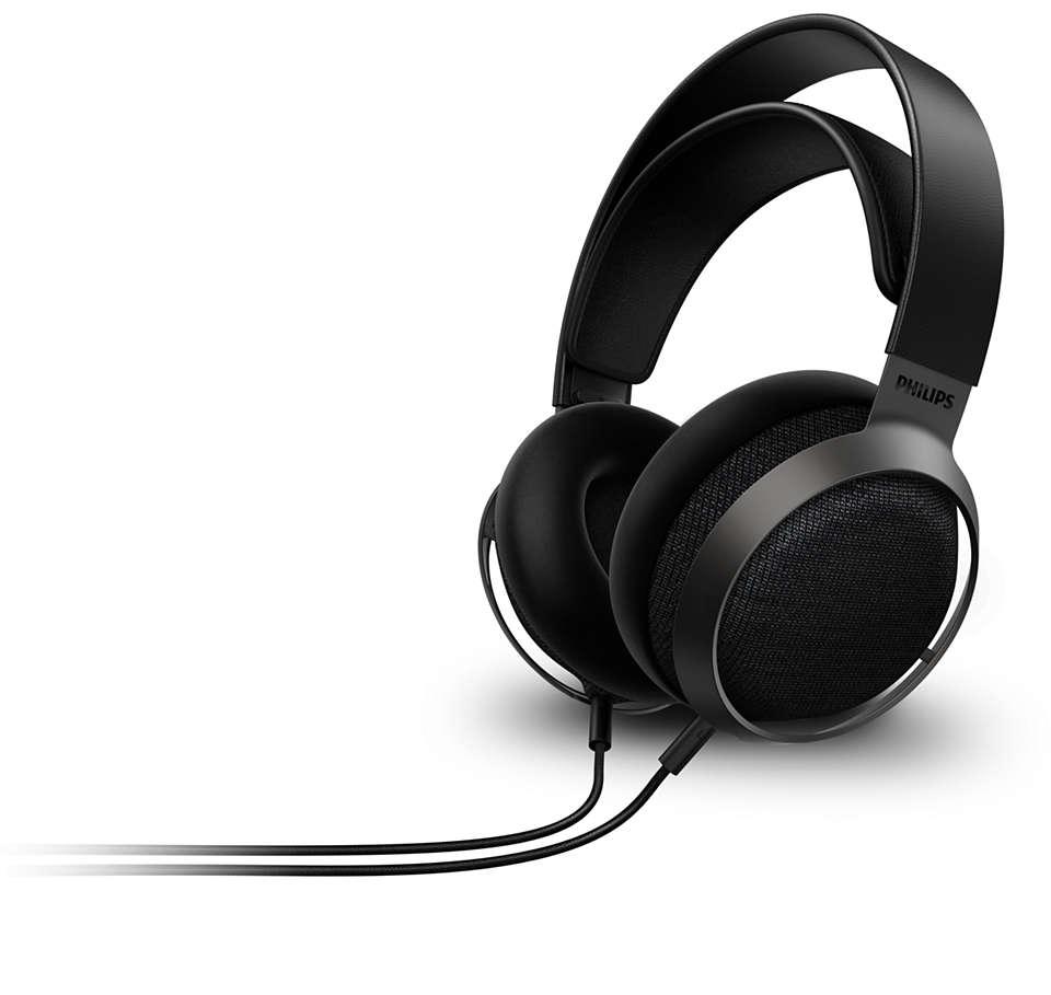 De ervaring van een concertzaal voor uw oren