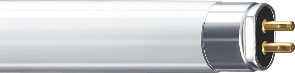 TL5 Essential HO Super 80