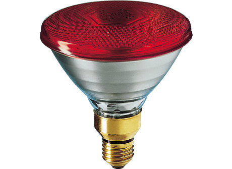 PARTYTONE 80W E27 240V PAR38 Red 1CT/6