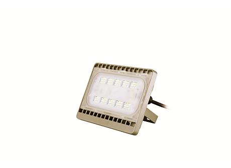 BVP161 LED23/WW 30W 220-240V WB GOLD