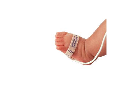 Einweg-SpO2-Sensor für Neugeborene, 24/Karton Sensor