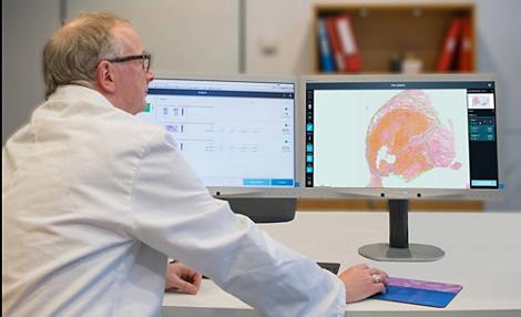 TissueMark Patologia computazionale