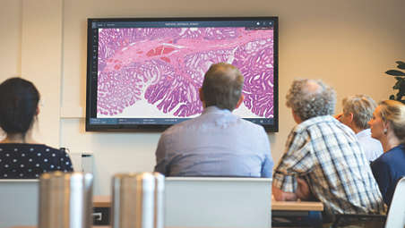 Transforming histopathology