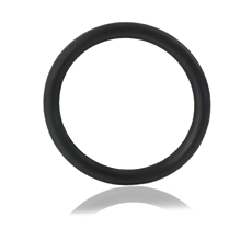HD5001/01  Rubber ring for beer tap unit