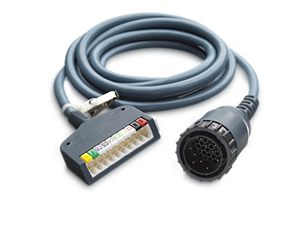 Digital ECG 12 LEAD 10' IEC Trunk Cable