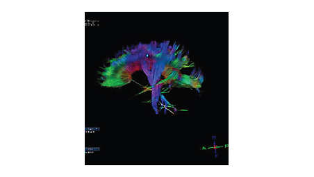 Neuroscience studies package